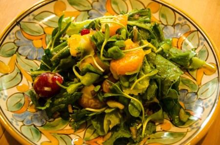 Nopal Cactus Salad-9