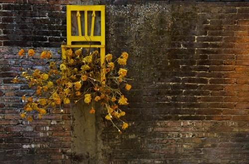 Sueño de Elpis-Muertos Marigold Art Installation