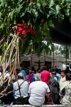 Tlacolula Market-11
