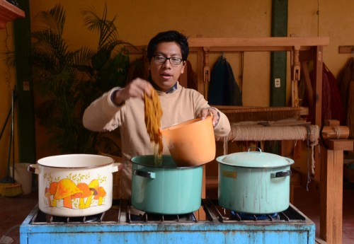 Eric Chavez Santiago giving dyeing wool with wild marigold