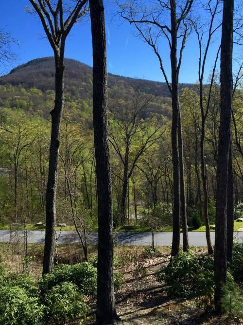 On Green Mountain, Hendersonville, NC