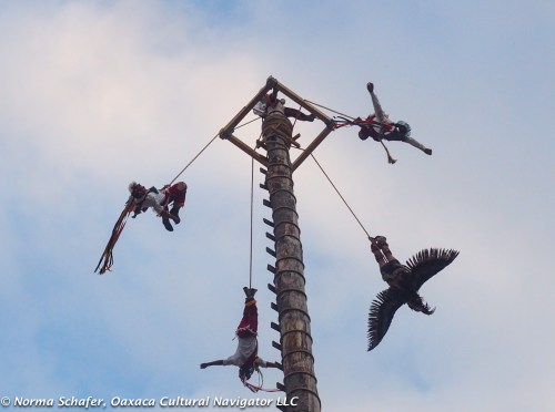 When the Voladores fly, everyone pays attention.
