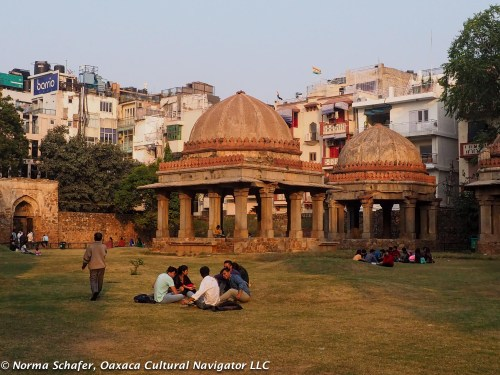 Hauz Khas green space surrounded by city