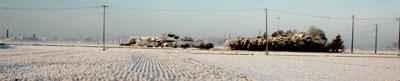 2010/2/14 朝6時 雪が降った朝に