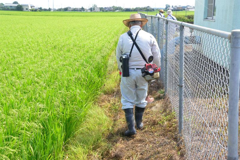 農地法面の草刈り。