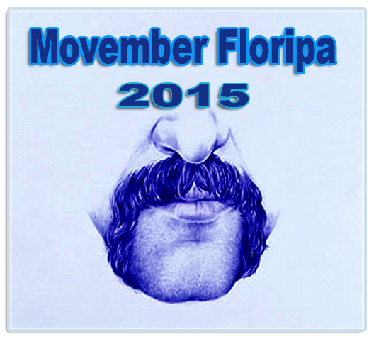 Bigode Movember Floripa