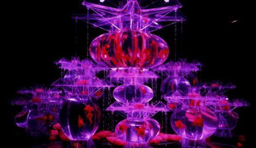 【アートアクアリウム展 〜名古屋・金魚の雅〜】行ってきたよ!松坂屋美術館にて9月16日(日)まで開催