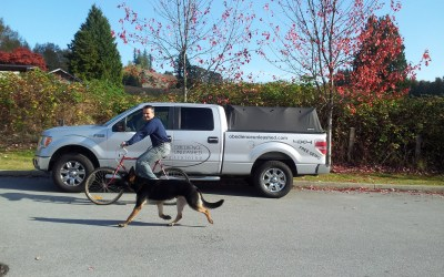 Biking with your dog?