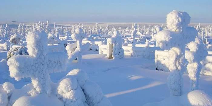Ходят ли зимой на кладбище