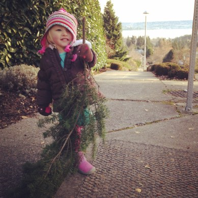 Had some lovely walking-weather in December. Claire liked to sweep the sidewalks with the trimmings of people's trees.