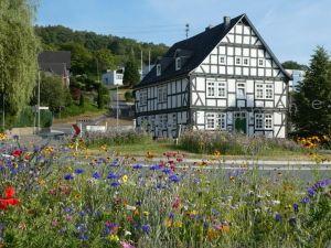 Oberfischbach blüht auf - Altes Pfarrhaus