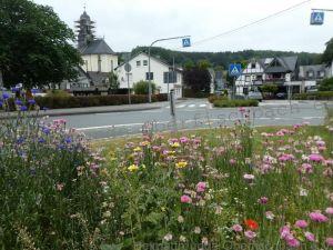 Oberfischbach blüht auf - Kreisverkehr