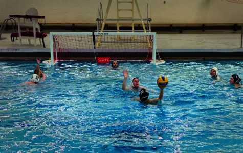 Club Water Polo Seeks Comeback Following Hiatus
