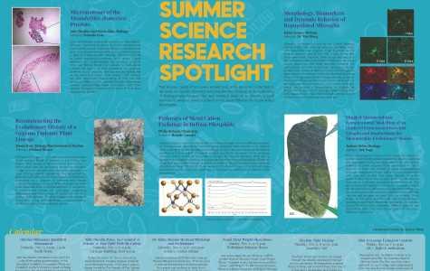 Summer Science Research Spotlight