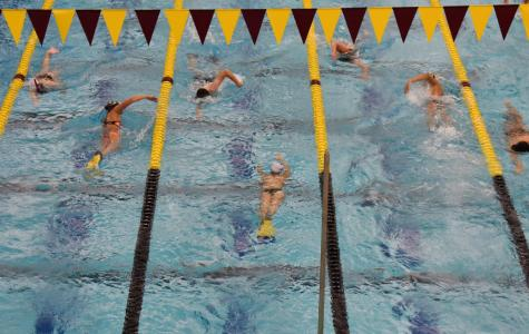 Swimming and Diving to the Beat of a New Pool