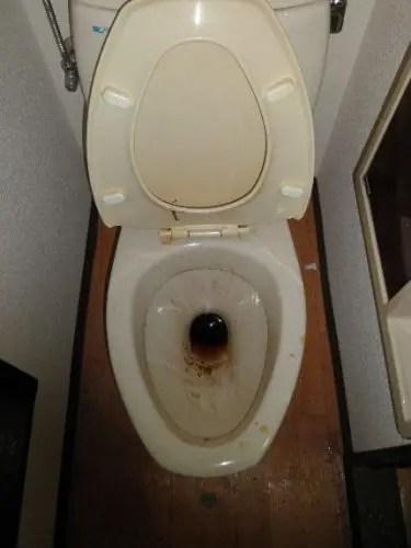 汚れたトイレ便器の特殊清掃業者 八尾市のトリプルエス