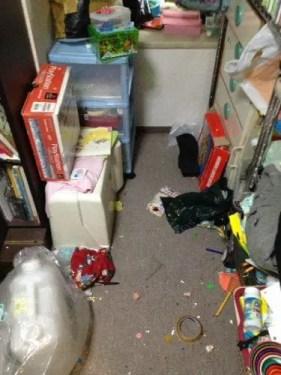 不用品が多すぎる汚部屋の片付け 大阪の汚部屋掃除業者トリプルエス