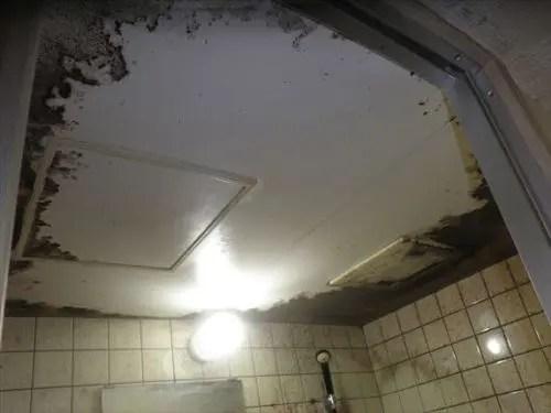 浴室のひどいカビ汚れ 大阪の特殊清掃業者トリプルエス