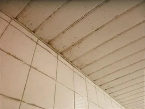 天井風呂B2