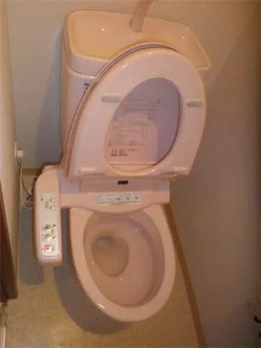 ゴミ屋敷の汚れたトイレの特殊清掃サービス