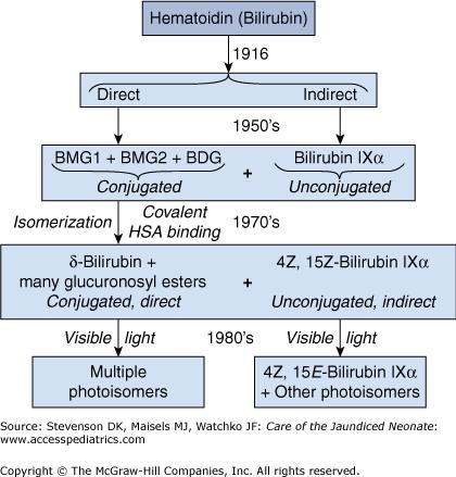 serum bilirubin direct and indirect test
