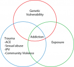 Chapter 1 – The Opioid Epidemic and Pregnant Women