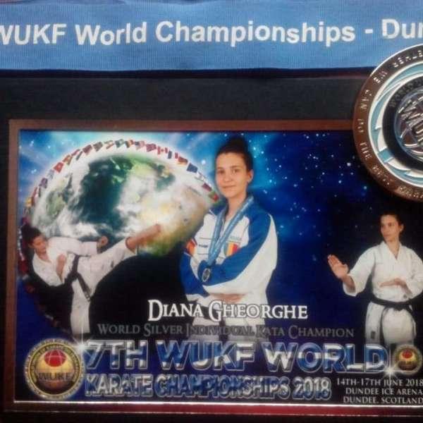 Slobozia: Diana Gheorghe, vicecampioană mondială la kata și kumite