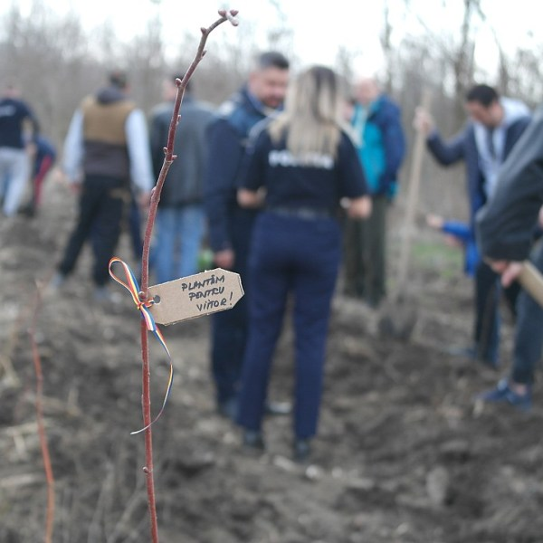 IPJ Ialomița: Plantăm împreună pentru un mediu sănătos