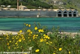 Favignana, chluba wyspy, Ex Stabilimento Florio