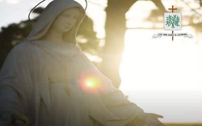 Mons. Olivera | María es la puerta del cielo, y como ella hizo, nos invita a decirle que sí a Jesús y llenar así nuestras vidas con sus Gracias