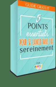 guide gratuit 5 points essentiels pour se lancer dans l'IEF sereinement