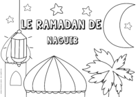 Naguib