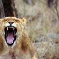 Apaiser sa colère et les tensions relationnelles