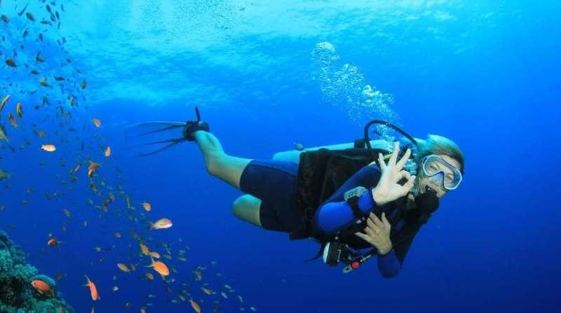Choses a faire avant de mourir - Plongee sous-marine
