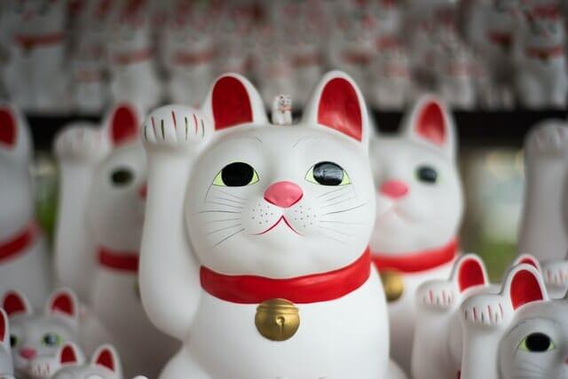 Japon chats