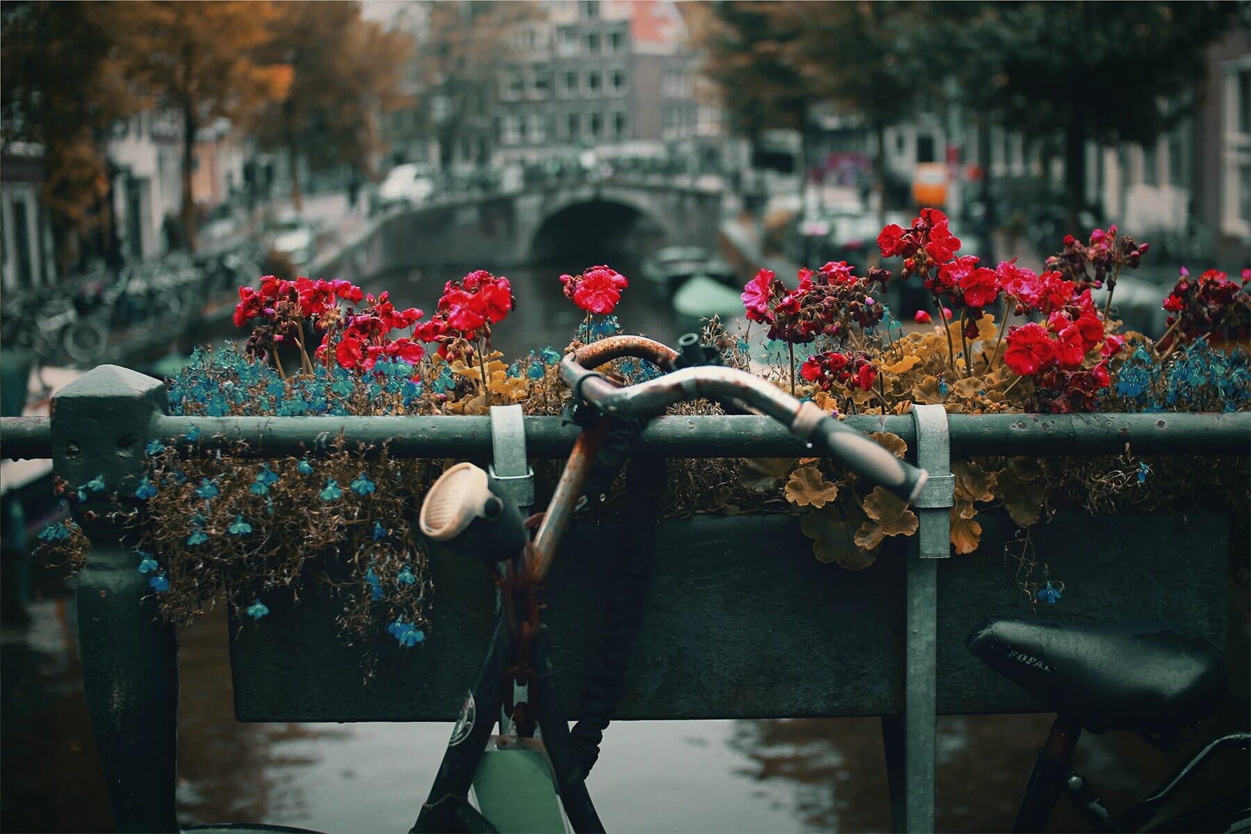 Canal amsterdam romantique