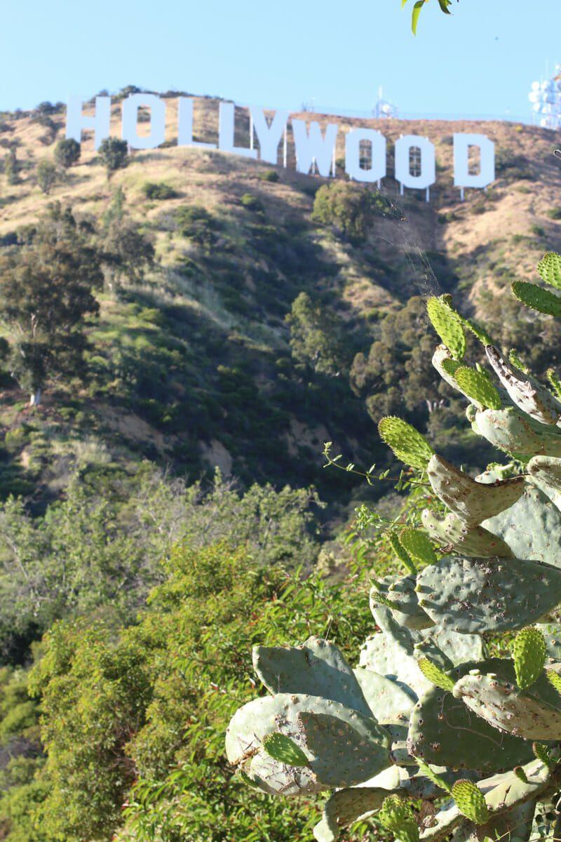Vue sur panneau Hollywood 2