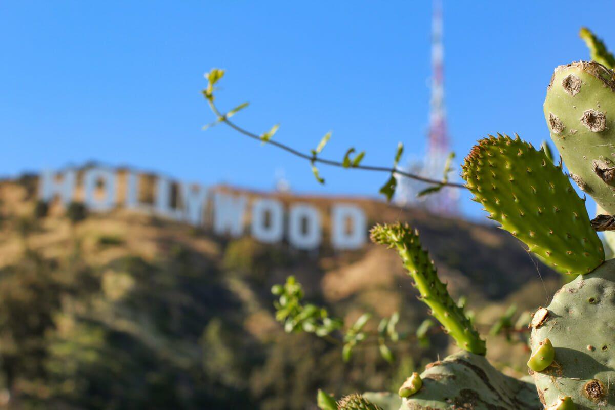 Vue-sur-panneau-Hollywood.jpg