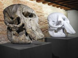 Parfois, on voit les différentes étapes de la sculpture, comme ici le crâne de mamouth
