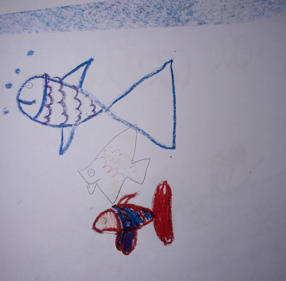 dessin poisson Samia