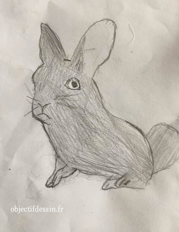 dessin lapin Thomas 11 ans