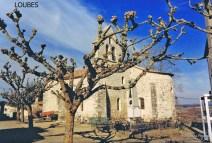 Eglise Loubes R T