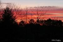 ciel à Gravelynes printemps 2008 (1) S