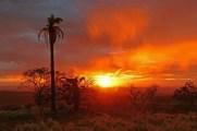 costa rica j7 coucher de soleil (28)