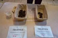 Truffe St Alvére (24)_DxO_GFDXO