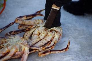 pêche crabe royal