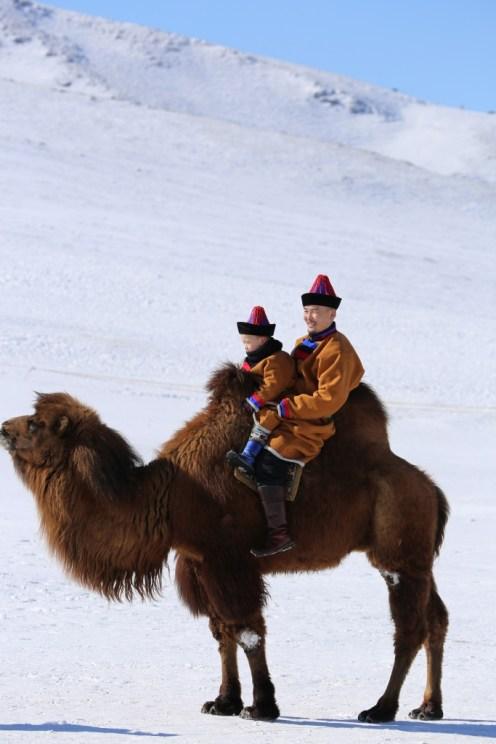 CamelEaglefestival Mongolie