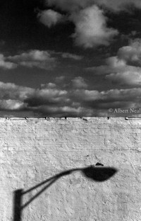 Figurative Black & White Photography: Lamp Post Shadow ...