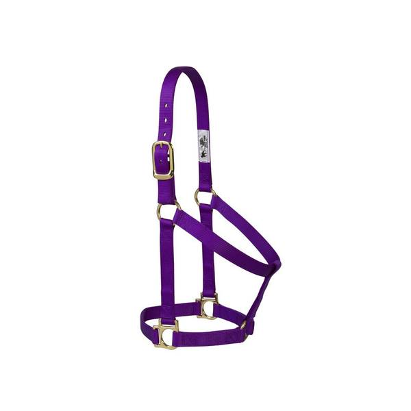 When you're looking for the perfect combination of dependability and value, our Weaver Leather Basic Non-Adjustable Halter is the right choice. With features like brass plated hardware, box-stitching at stress points and oblong buckle holes, this 1