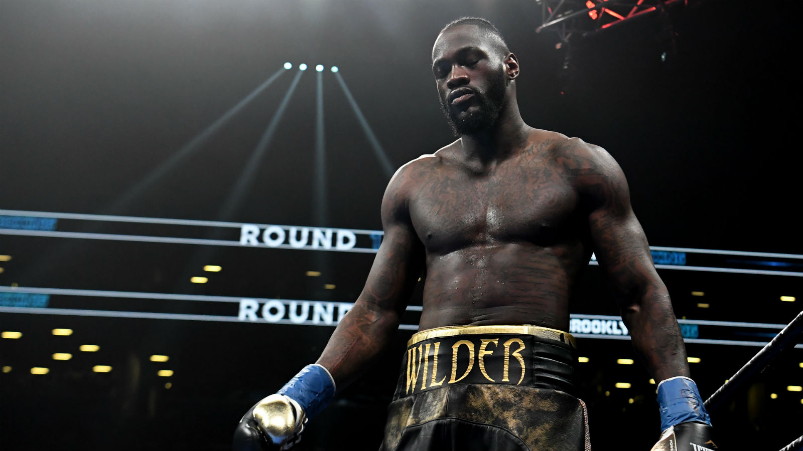 Tyson fury also complimented deontay wilder after the fight and said that he gave him a 'real worthy. Deontay Wilder Favorite in November Rematch Vs. Luis Ortiz